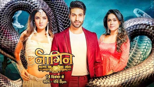 Naagin 4 22nd March 2020 Written Update: Shalaka makes a new plan with Vish to destroy Dev and Vrinda's relation!